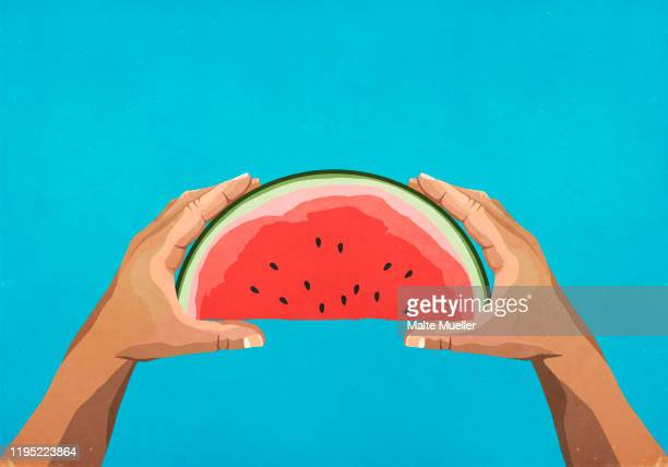 personal perspective hands holding watermelon slice - food and drink stock illustrations