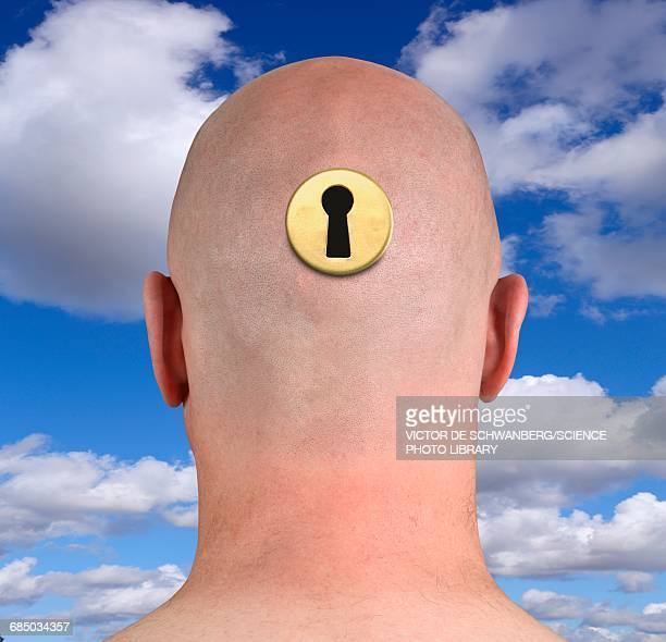 persons head with keyhole - keyhole stock illustrations, clip art, cartoons, & icons
