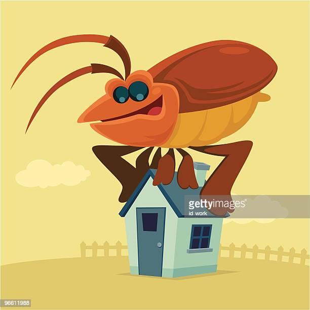 ilustraciones, imágenes clip art, dibujos animados e iconos de stock de invasión de plagas - cucarachas