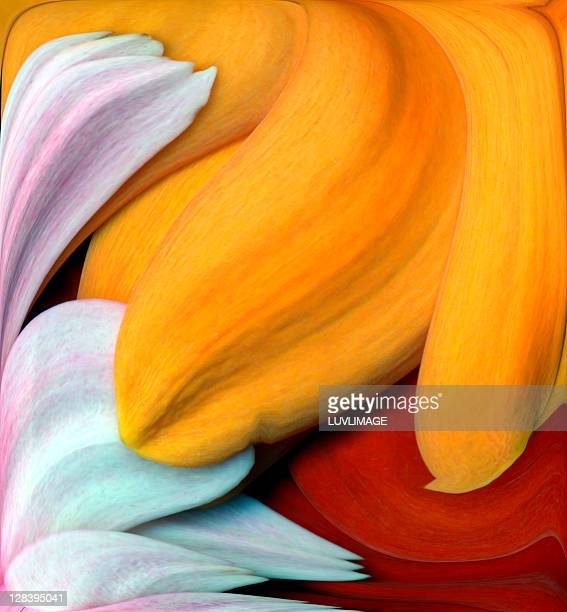 petal swirl - digital enhancement stock illustrations