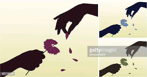 blütenblätter auf gänseblümchen - blütenblatt stock-grafiken, -clipart, -cartoons und -symbole