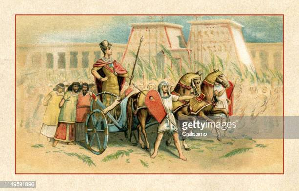 pharaoh ramesses ii at triumph ceremony in ancient egypt 1350 ac - pharaoh stock illustrations