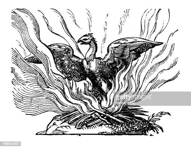 phoenix rising from the ashes - ash stock illustrations, clip art, cartoons, & icons