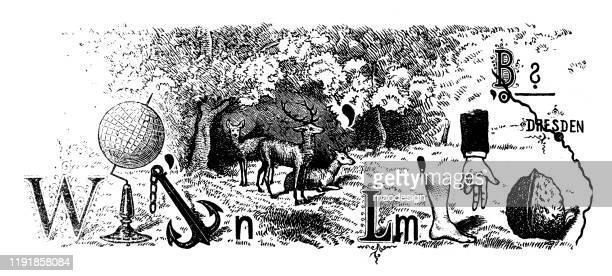 ilustrações, clipart, desenhos animados e ícones de enigma do retrato com com cervos, globo, pé e noz - 1887