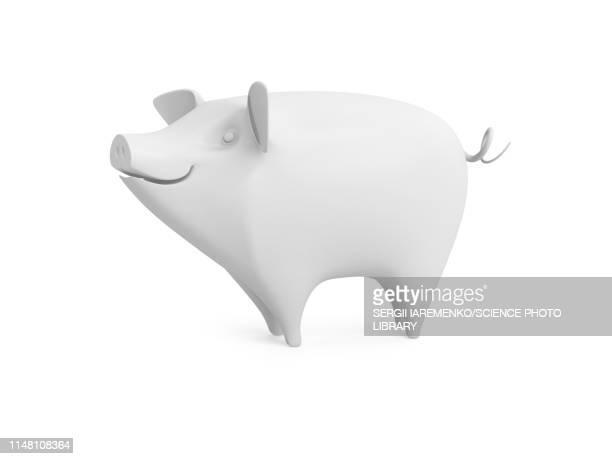 pig, illustration - wildlife stock illustrations