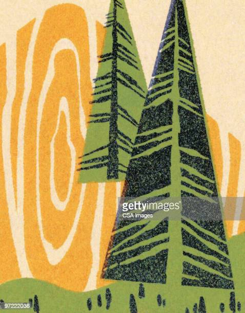 pine trees - pine wood material stock illustrations, clip art, cartoons, & icons