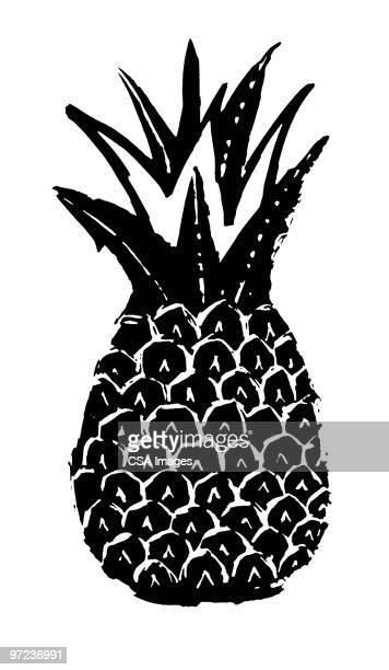 illustrations, cliparts, dessins animés et icônes de pineapple - ananas