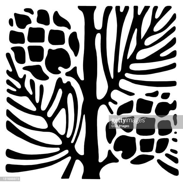 pinecones on pine branch - branch stock illustrations
