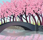 Pink trees and bridge