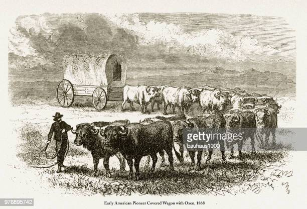 Pioneer Covered Wagon with Oxen, Early American Victorian Engraving, 1868