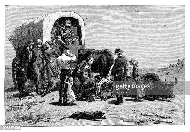 pioneers tending to injured bull - horse cart stock illustrations, clip art, cartoons, & icons