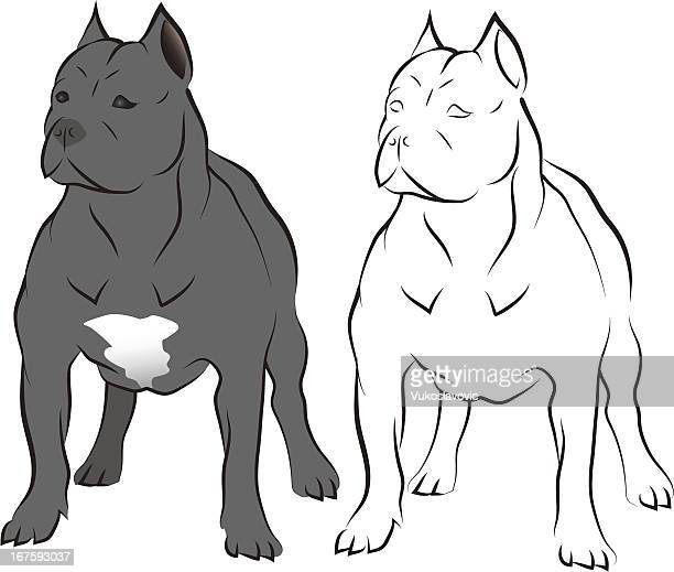 Illustrations et dessins anim s de chien mechant getty - Dessin de pitbull ...