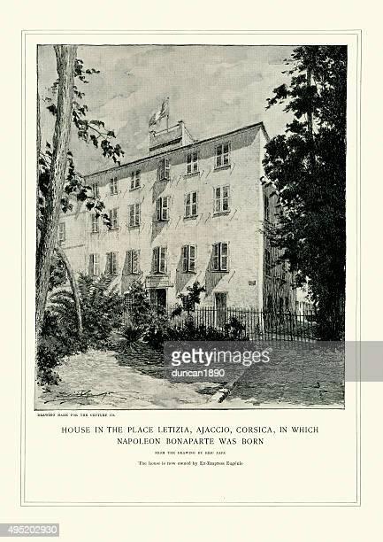 place letizia, corsica birthplace of napoleon bonaparte - corsica stock illustrations, clip art, cartoons, & icons