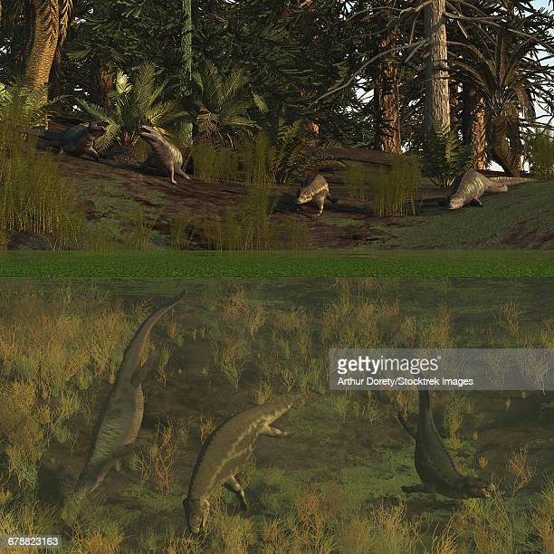 Placodus reptiles rest on shore and dive for food in the Triassic period.