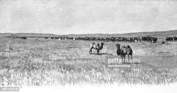 plaines of mongolia illustration 1895 'the earth and her people' - savannah stock illustrations, clip art, cartoons, & icons