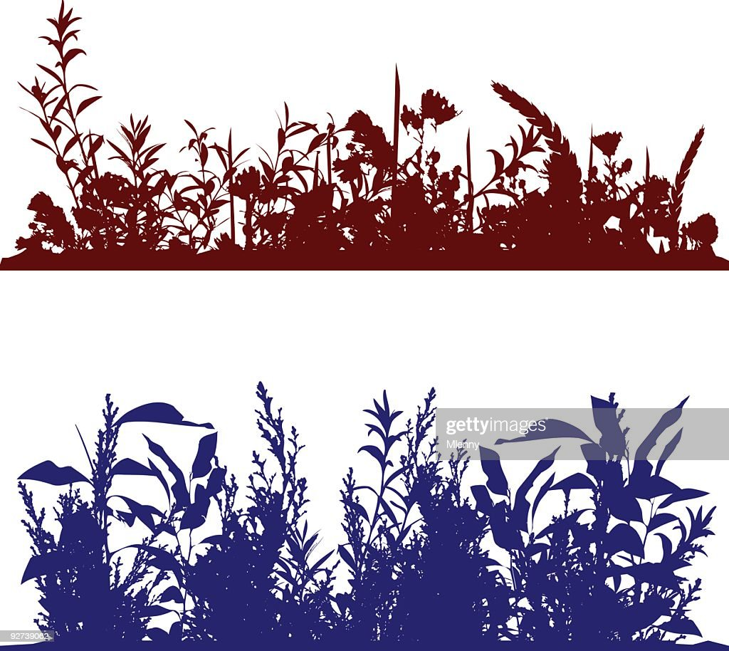 Plant Flower Leaf Border : stock illustration