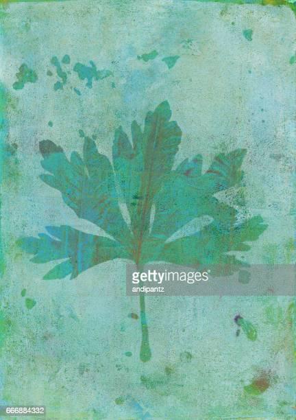 植物葉手紙に緑の色の印刷