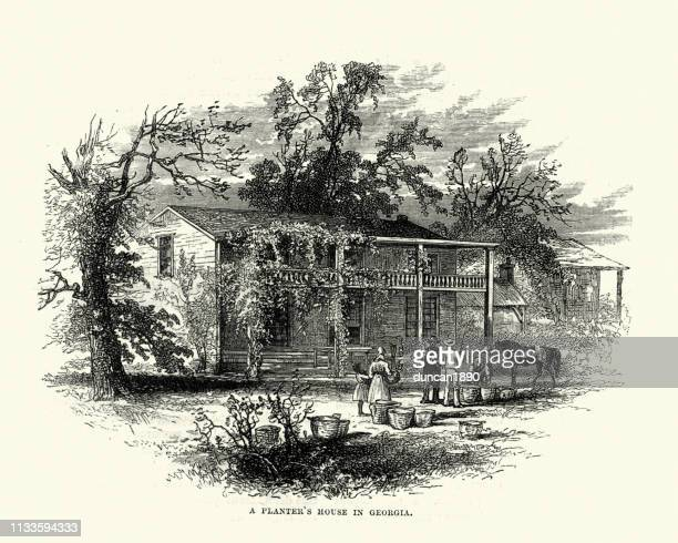 planter's house in georgia, usa, 19th century - southern usa stock illustrations, clip art, cartoons, & icons