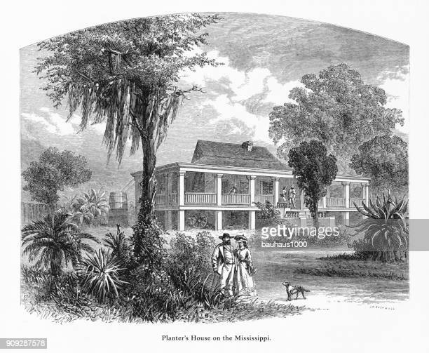 planter's house on the mississippi river at new orleans, louisiana, united states, american victorian engraving, 1872 - southern usa stock illustrations, clip art, cartoons, & icons
