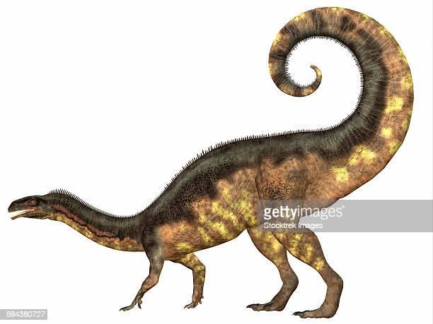 ilustraciones, imágenes clip art, dibujos animados e iconos de stock de plateosaurus dinosaur, side view. - paleobiología