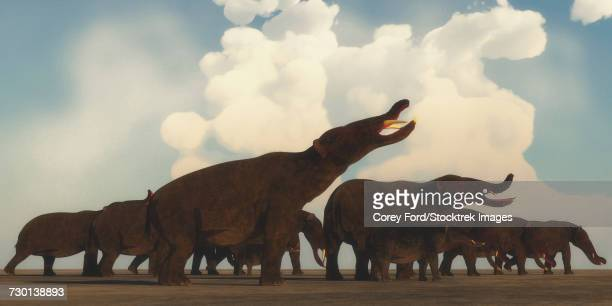 A Platybelodon herd gathers on the plains of Africa.