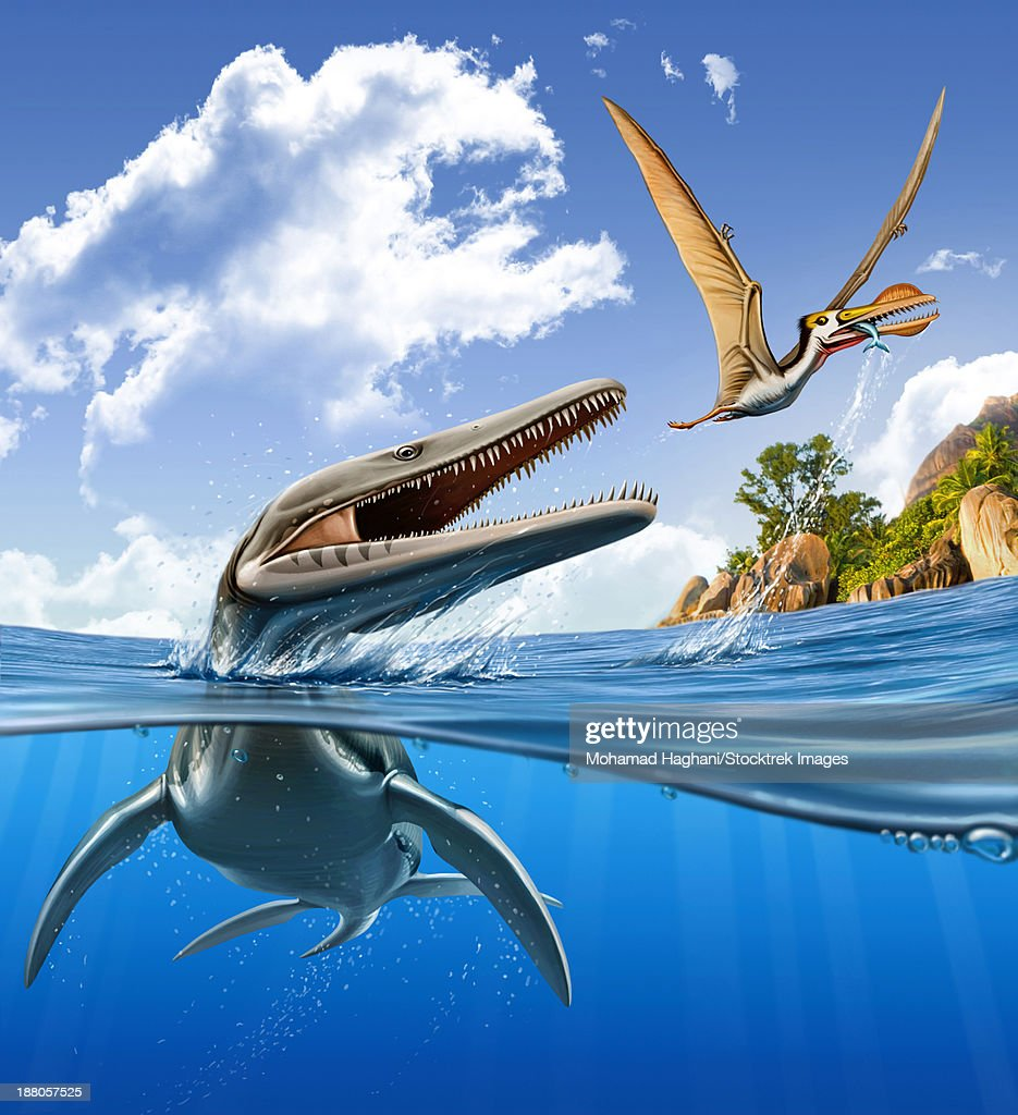 A Plesiopleurodon jumps out of the water, attacking an Ornithocheirus.  : stock illustration