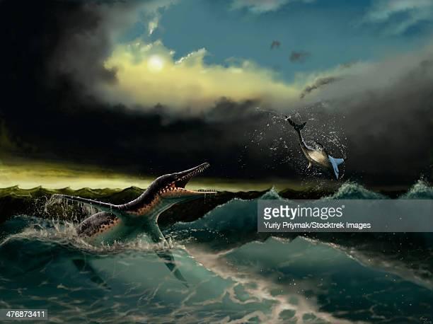 Pliosaurus irgisensis attacking a shark.