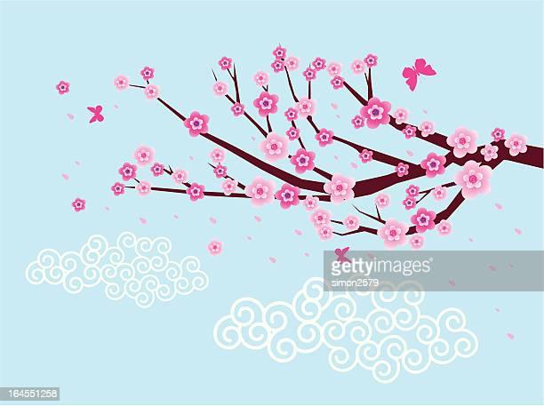 Plum Blossom background