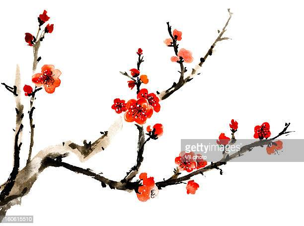 stockillustraties, clipart, cartoons en iconen met plum blossom - japan