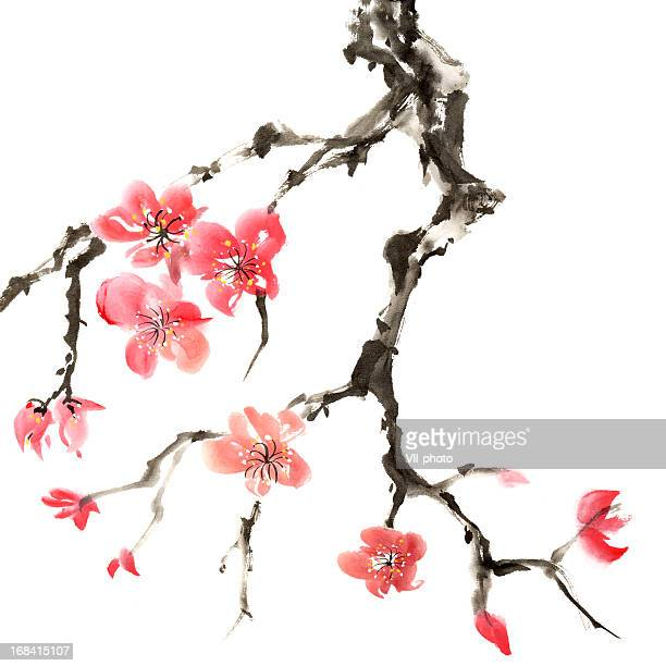 stockillustraties, clipart, cartoons en iconen met plum blossom - china oost azië