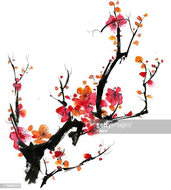 plum blossom - japan stock-grafiken, -clipart, -cartoons und -symbole