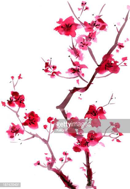plum blossom painting - flowering trees stock illustrations, clip art, cartoons, & icons