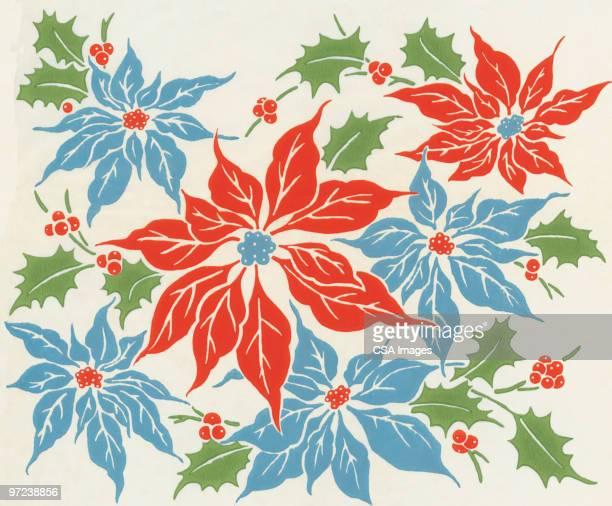 ilustraciones, imágenes clip art, dibujos animados e iconos de stock de poinsettias - flor de pascua