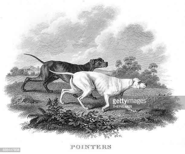 Pointers engraving 1812