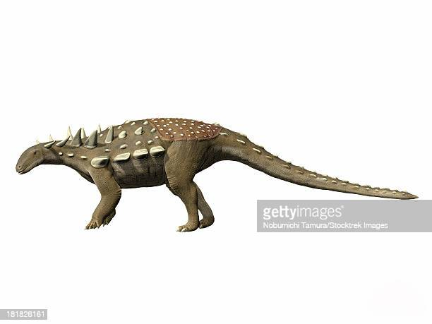 polacanthus foxii, early cretaceous of england. - thyreophora stock illustrations, clip art, cartoons, & icons