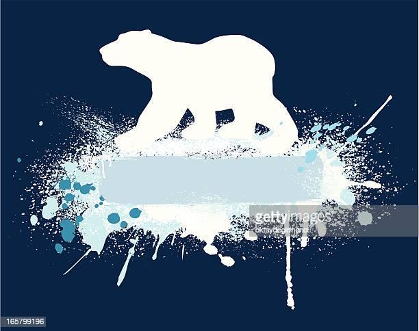 ilustraciones, imágenes clip art, dibujos animados e iconos de stock de oso polar banner - oso pardo