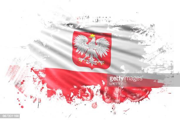Polish Ink Grunge Flag