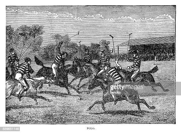 polo match - polo stock illustrations