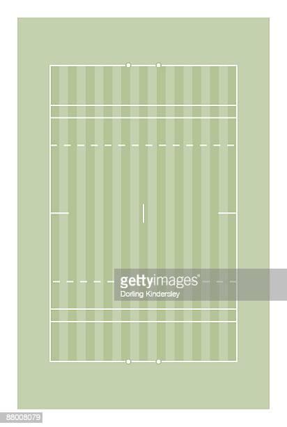 Polo pitch