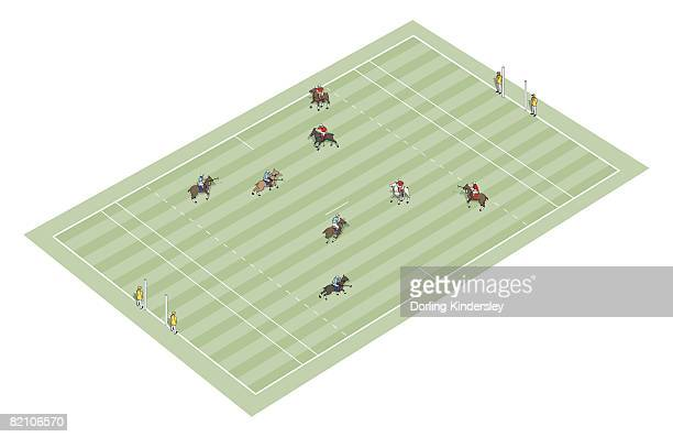 Polo playing field