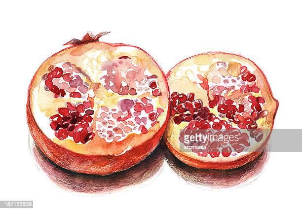 illustrations, cliparts, dessins animés et icônes de grenade - fruit exotique