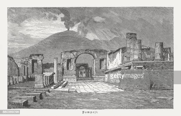 pompeii after the excavation in the 19th century, published 1883 - mt vesuvius stock illustrations, clip art, cartoons, & icons