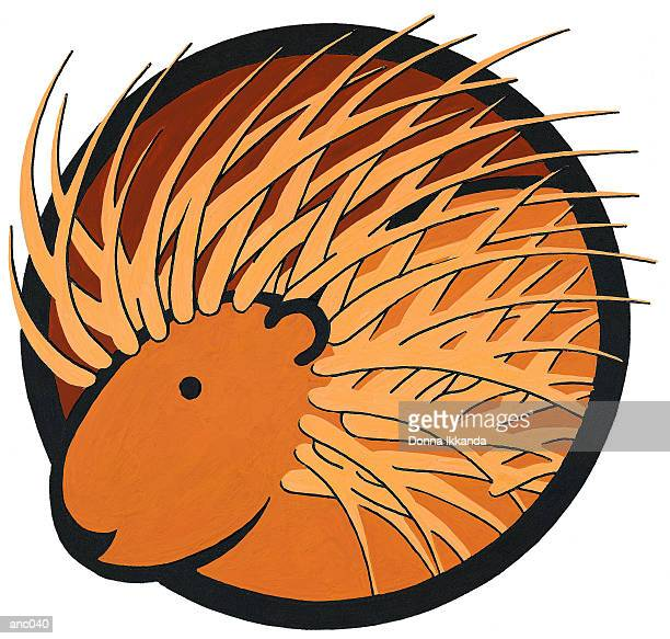 porcupine - ヤマアラシ点のイラスト素材/クリップアート素材/マンガ素材/アイコン素材