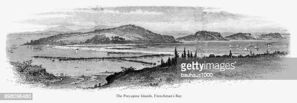 porcupine islands, frenchman's bay, maine, united states, american victorian engraving, 1872 - hancock county stock illustrations, clip art, cartoons, & icons