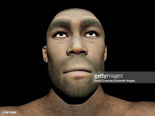 bildbanksillustrationer, clip art samt tecknat material och ikoner med portrait of a male homo erectus, prehistoric ancestor that lived around 1.8 million years ago, black background - paleolitico