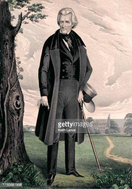 portrait of andrew jackson, 7th united states president - presidential candidate stock illustrations