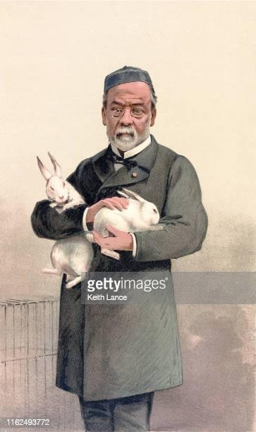 portrait of louis pasteur, french biologist - asymmetry stock illustrations