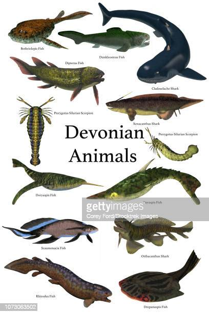 poster of prehistoric animals during the devonian period. - thyreophora stock illustrations, clip art, cartoons, & icons