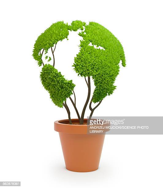 ilustrações de stock, clip art, desenhos animados e ícones de pot plant in shape of earth, illustration - planta de vaso