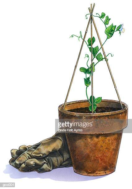 potted plant & gloves - gardening glove stock illustrations, clip art, cartoons, & icons